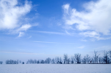Paesaggio invernale con foschia
