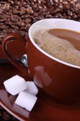 Coffee / Brown