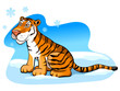 pretty tiger on the snow