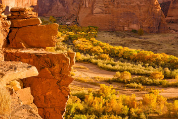 Canyon de Chelly Landscape