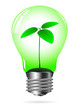 light bulb w plant on white