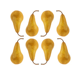 Eight Bosc pears against a white background.