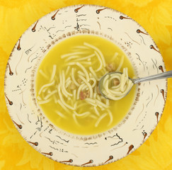 Close view of chicken noodle soup with spoon