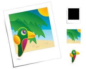 Animal Scenes / Holidays Parrot