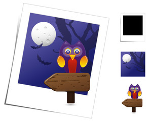 Animal Scenes / Halloween Owl