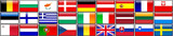 Flags Of Europeans Members poster