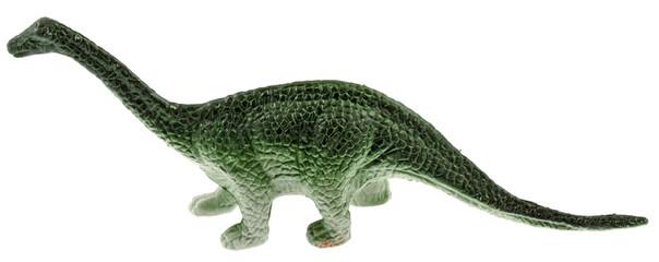 dinosaure fond blanc