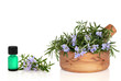 Rosemary Herb and Essence