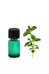 Peppermint Leaf and Essence