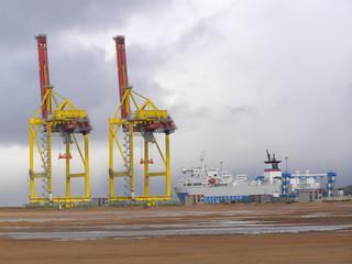 Enormous port cranes in port territory