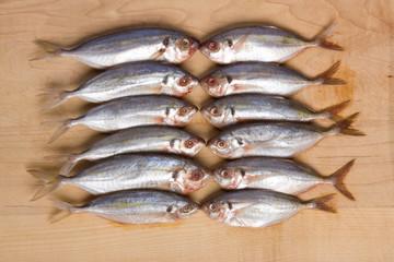 Twelve fish