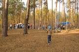 the camp in the forest