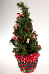 Abeto de Navidad con maceta roja