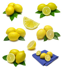 Lemon Sampler