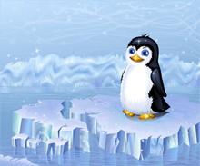 Krajobraz Arktyki i pingwin siedzi na krze