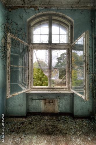 open window - 18556009