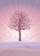 Calm pastel-colored tree scenery