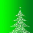 Leinwandbild Motiv Tanne auf grünem Hintergrund