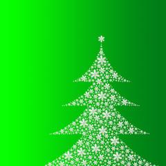 Tanne auf grünem Hintergrund