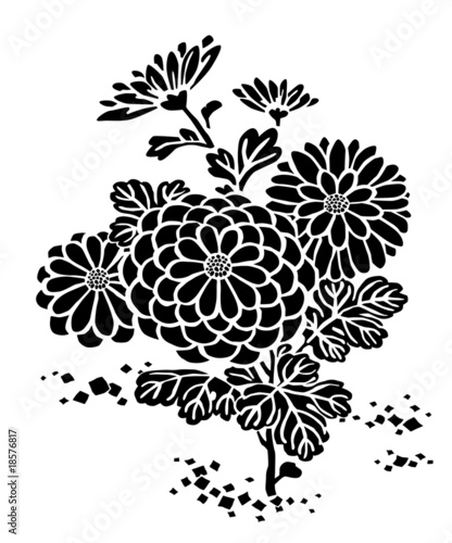 菊の花の模様 chrysanthemum flower