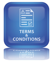 """"""" Terms & Conditions """" Button (square - vector - reflection)"""