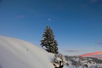Winterevening in the austrian Alps (Tyrol, Austria)
