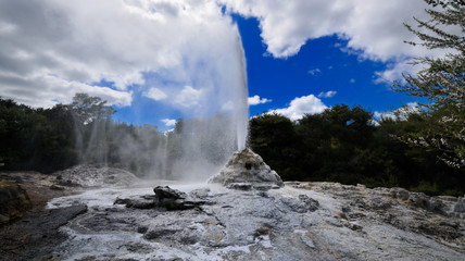 Lady Knox Geyser, Wai-O-Tapu Thermal Wonderland, NZ