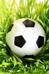 Football on the grass.