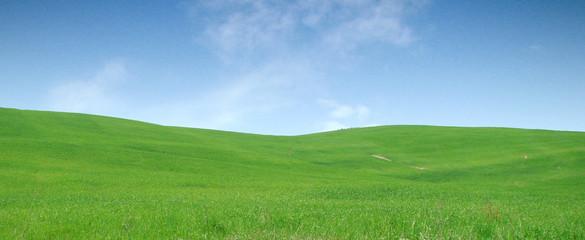 Colline verdi e cielo azzurro della Toscana