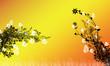 Leinwandbild Motiv Blumen Blumenwiese