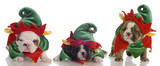 english bulldog puppies dressed up as elves poster
