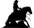 Sliding Stop - Quarter Horse