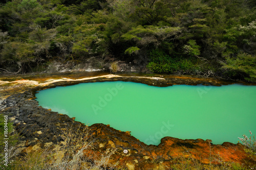 Pond in Marble Terrace, Waimangu Volcanic Valley, NZ