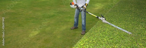 hedge trimming - 18697442