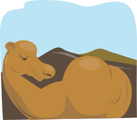 Illustration of a camel lying in a desert
