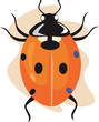 Illustration of A vivid coloured lady bug moving