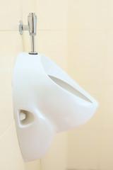 urinal, pissoir