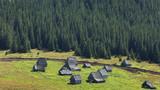 Traditional mountain village in Transylvania,Romania poster