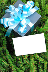 Gift box  and Christmas card on pine branches