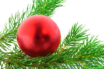 Christmas branch fur-tree with red boll
