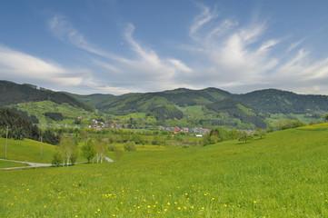 Kinzigtal im Schwarzwald
