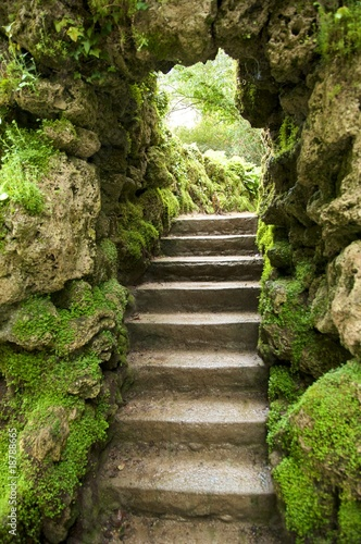 stone stairs at nature - 18788665