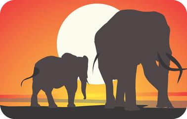 Illustration of elephants walking in sunset