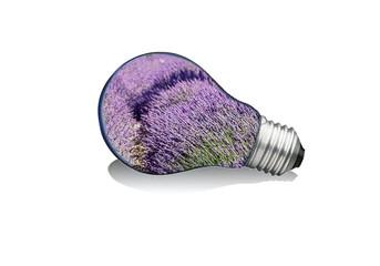 Ampoule à lavandes