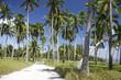 malapascua island roads