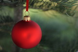 Christmas evergreen tree and red glass ball poster