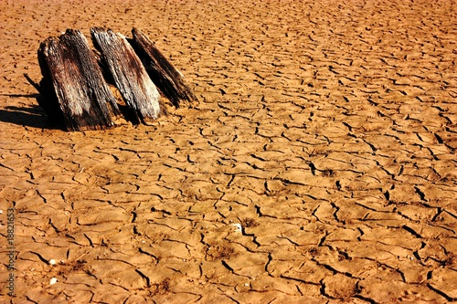Fotobehang Droogte Ausgetrocknete Erde
