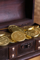 Gold Coins / Treasure