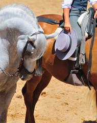 Espectaculo con caballo andaluz