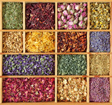 Fototapety Assortment of dried tea in wooden box
